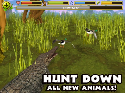 Игра Wildlife Simulator: Crocodile