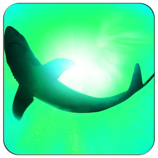AAA Shark In The Line - A Great Shark Entertainment Game For Kids,Boys & Girls Free iOS App