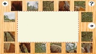 Animée de Puzzle Avec des Poneys et Chevaux Haflinger - Jeu Gratuit Du Plaisir Pour des enfants, Filles, Garçons et Toute la FamilleCapture d'écran de 5