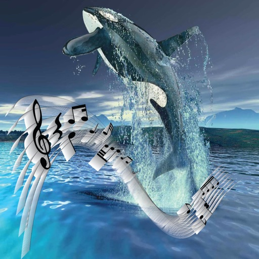 Play with Whales iOS App