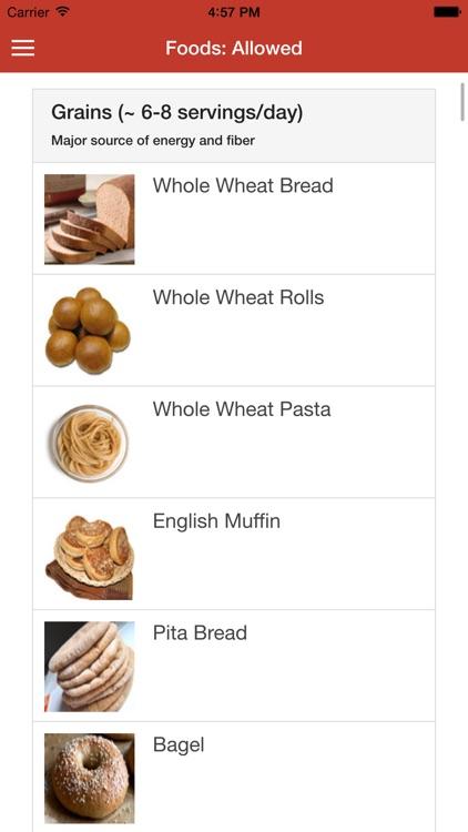 dash diet guide