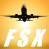 FSX DG-808S