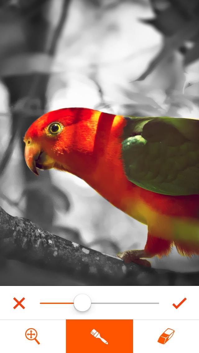 Phoenix Photo Editor Скриншоты6