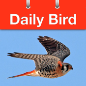 Daily Bird - the beautiful bird a day calendar app icon