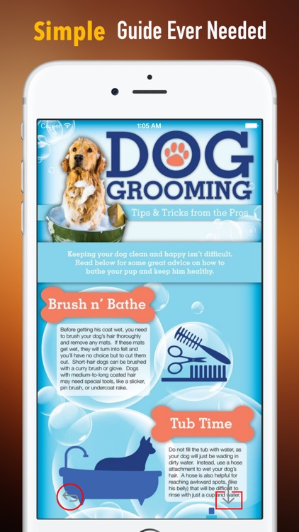 Dog Grooming 101DIY Tips and Tutorial by Steve Chang