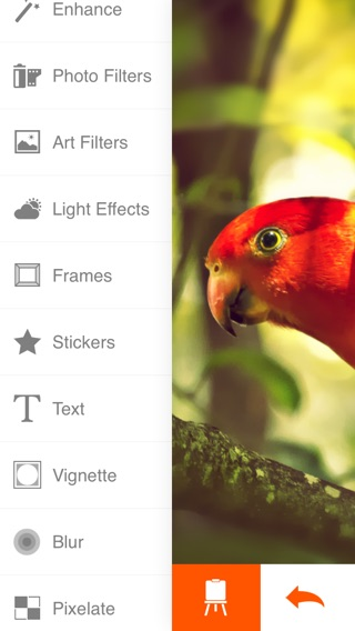 Phoenix Photo Editor Screenshot