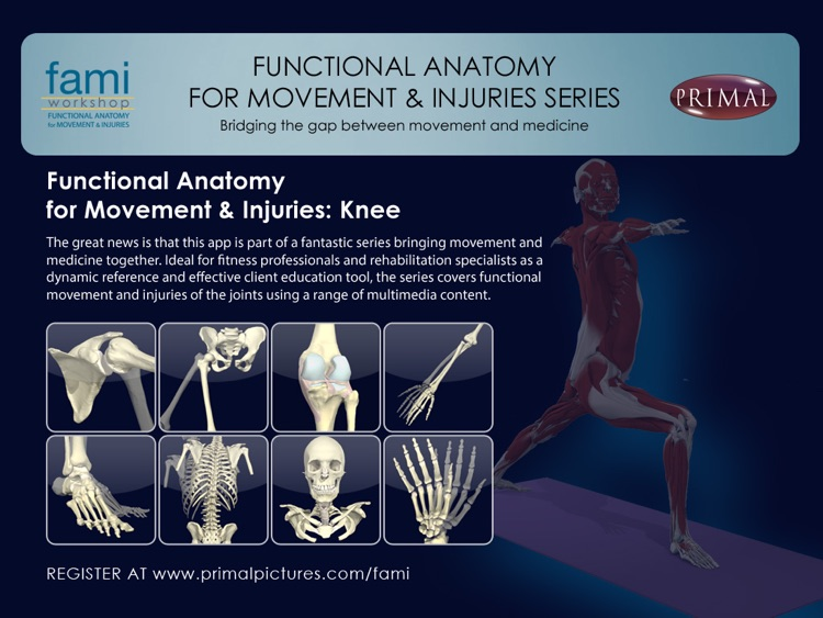 Functional Anatomy for Movement and Injuries: Knee by Primal ...