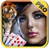 Ultra Tiger Solitaire Journey Easy Fun Playing Card Game Pro