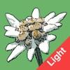 Flora Helvetica Light français