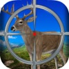 2016 Deer Hunting Season : WhiteTail pro Hunter Adventure