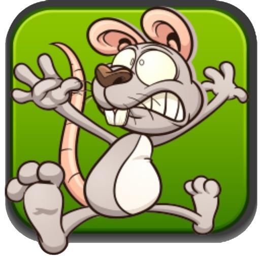 Mouse Cheese Run iOS App