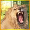 2016 Jungle Sniper Safari Hunting