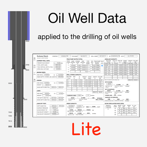 Oil Well Data Lite