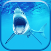 Shark Wallpaper & Lock Screen Themes – Pimp Your Background With Cool Wallpapers