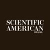 Scientific American Brasil.