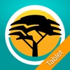 FNB Banking App for Tablet