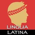 Lingua Latina: Nouns