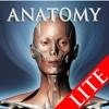 DS ANATOMY HEAD & NECK MUSCULOSKELETAL SYSTEM Lite