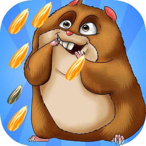 Crazy Hamster Run iOS App