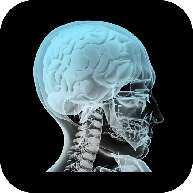 anatomy 4d on the app store, Muscles