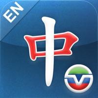 SINOVISION - 美国中文电视英文台