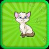 Cat Sounds: The Best Animal Sounds App