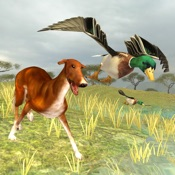 Bird Dog Chase Simulator Hack - Cheats for Android hack proof