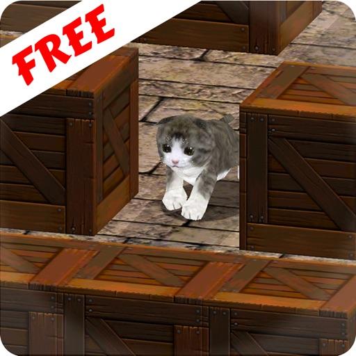 Cu Cat in Slide The Walls 3D Free iOS App