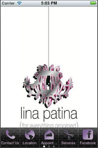 Lina Patina screenshot 3