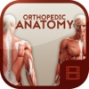 Animated Orthopedic Anatomy Video Training