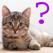 猫の品種のクイズ iPad