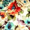 James Dunlop Wallpapers HD: Zitate Hintergründe mit Design Bilder