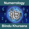 Numerology by Biindu Khuraana