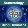 Numerology by Biindu Khuraana