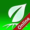GiaoThong247 Online
