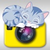 Cat Snap - Photo Bomb Funny Cats Instantly Into Your Photos With Kitty Collage & Picture Frames Free