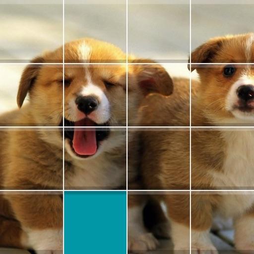 Puppies Sliding Jigsaw iOS App
