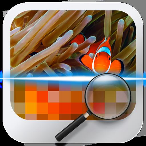 Similar Image Detector
