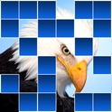 Guess The Animal Quiz - Reveal Edition