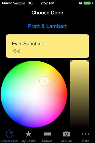 Paint Pro by Fig-8 screenshot 1
