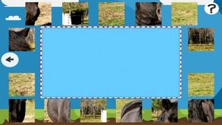 Puzzle Avec des Chevaux et Poneys - Jeu Interactif Gratuit Pour Les Enfants Apprendre la PenséeCapture d'écran de 4