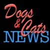 Dogs & Cats News