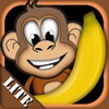 Monkey & Bananas for iPad