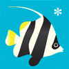 Peek-a-Zoo unter Wasser: Guck-guck-Spiel
