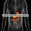 Understanding Acid Reflux acid dreams torrent