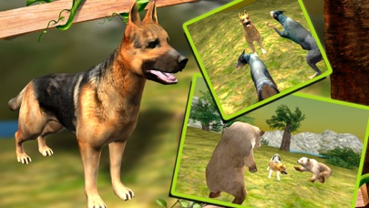download Life of A Dog - Survival Story apps 0