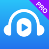 NaturalReader Text to Speech HD Pro