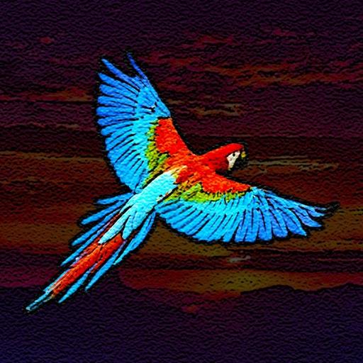 Birdistry iOS App