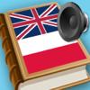 Polish English best dictionary for translator - Słownik Polski angielski
