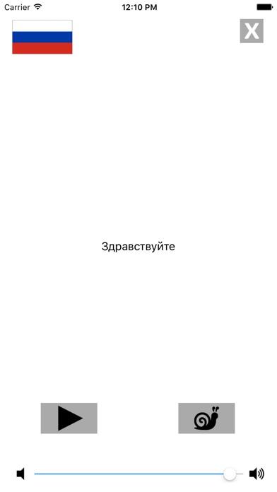 Русско / Французский говорящий разговорник словарь - Multiphrasebook Скриншоты6